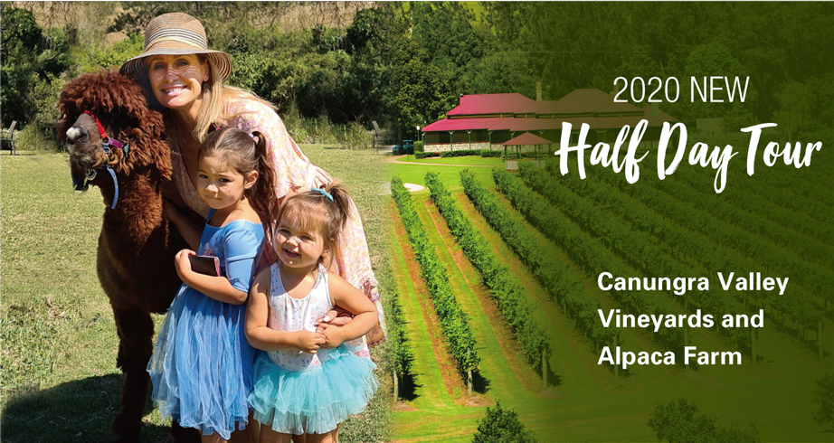 Canungra Valley Vineyards and Alpaca Farm Half Day
